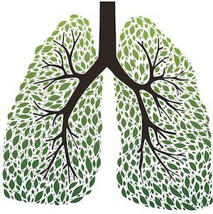 Geheilte Lunge
